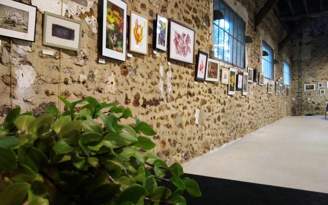 Une semaine d'exposition – À travers un rayon de soleil