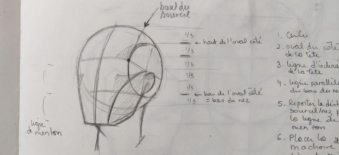 Reprendre les bases du dessin